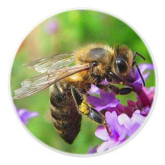 Honeybee on Verbena Ceramic Knob