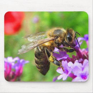 Honeybee on Verbena Mouse Pad