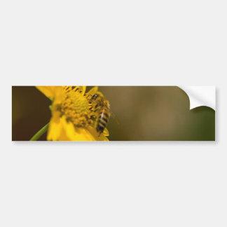 Honeybee on Yellow Flower Bumper Sticker