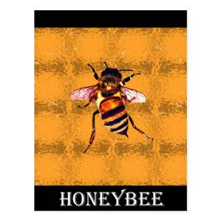Honeybee Post Cards