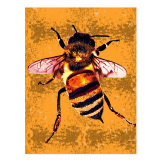 Honeybee Postcard