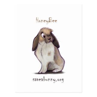 HoneyBee postcards
