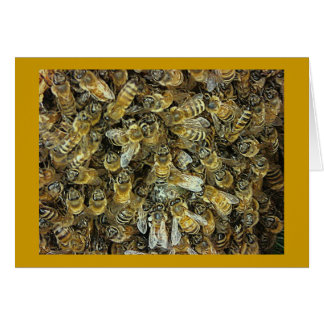 Honeybee Swarm Card