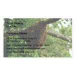 Honeybees Business Card Templates