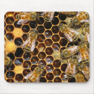 Honeycomb and Bees Mousepad