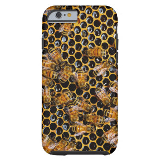 Honeycomb and Bees Tough iPhone 6 Case
