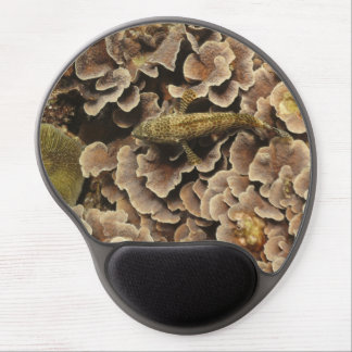 Honeycomb Grouper Gel Mouse Pad