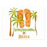Honeymooning in Belize Postcard