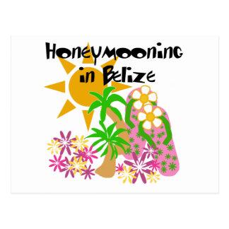 Honeymooning in Belize Post Card
