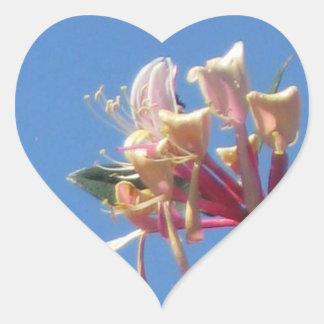 Honeysuckle Heart Sticker