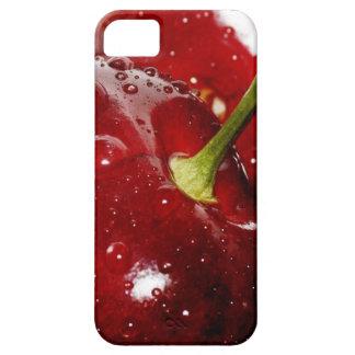 Honeysuckle_sweet Gifts iPhone SE/5/5s Case