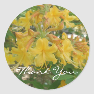 Honeysuckle Thank You Stickers