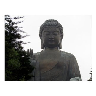 hong kong big buddha post card