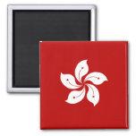 Hong Kong High quality Flag Magnets