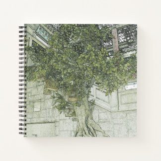 Hong Kong Retro: Banyan in the Wall Notebook