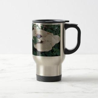 Hongo del arbolado taza de café