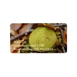 Hongos #2 del bosque etiqueta de dirección