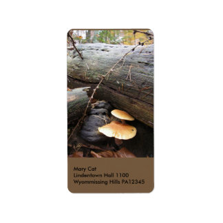 Hongos #3 del bosque etiquetas de dirección
