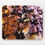 Hongos coloridos tapetes de ratón