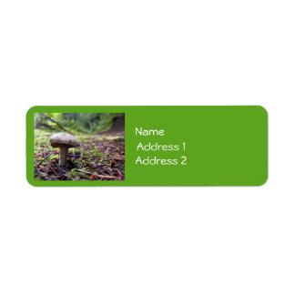 Hongos del bosque etiqueta de remite