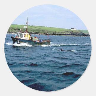 Hongos dolphin.jpg de la cañada pegatina redonda