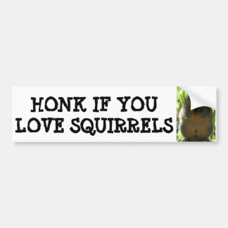 HONK IF YOU LOVE SQUIRRELS BUMPER STICKERS