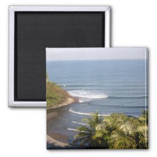 Honoli'i Beach Magnets