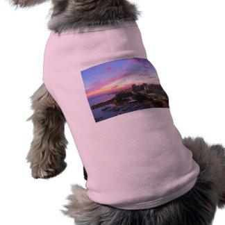 Honolulu cityscape Hawaii sunset T-Shirt