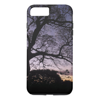 Honolulu Sunset iPhone 8 Plus/7 Plus Case