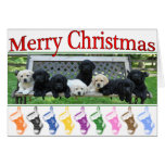 Honor Bench Christmas Cards