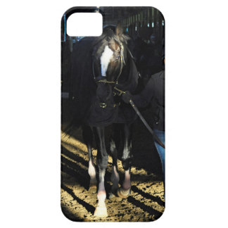 Honor Code at Belmont Park iPhone SE/5/5s Case