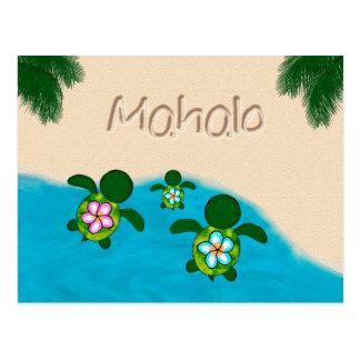 Honu Baby BOY Sea TURTLE Thank You Boys Blue #281 Postcard
