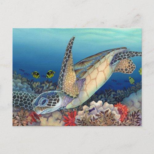 Honu Green Sea Turtle Postcard