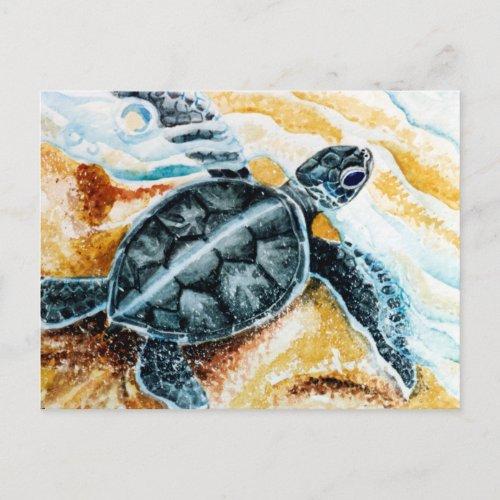 Honu Hatchling Green Sea Turtle Postcard