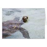 Honu Hawaiian Sea Turtle - Hawaii Turtles Greeting Cards