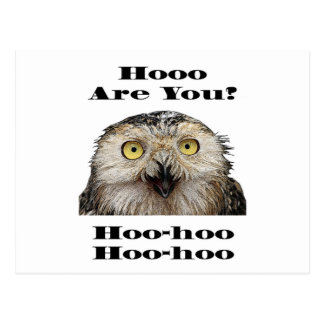 Hoo Are You? Owl Who Are You? Postcard