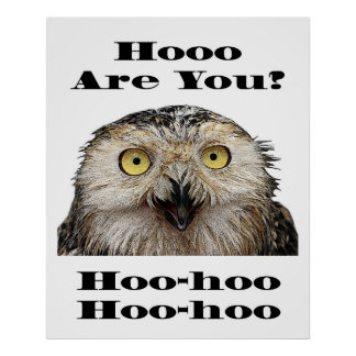 Hoo Are You? Owl Who Are You? Poster