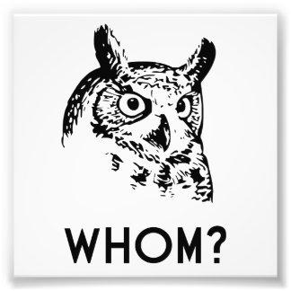 Hoo Who Whom Grammar Owl Photo Print