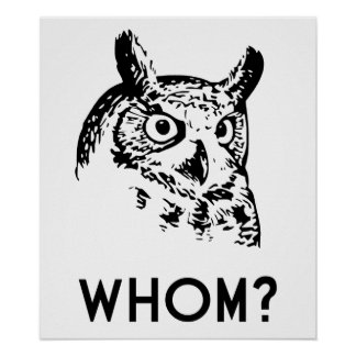 Hoo Who Whom Grammar Owl Poster