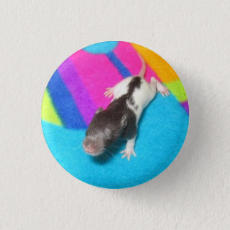 Hooded Baby Rat Pinback Button