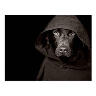 Hooded Labrador Postcard