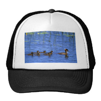Hooded Merganser brood Trucker Hat