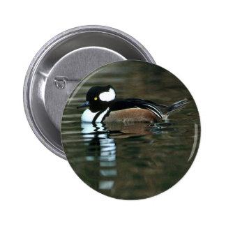 Hooded Merganser (Drake) Pinback Buttons