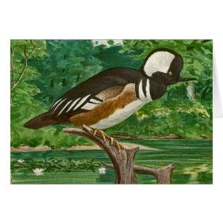 Hooded Merganser Ducks Illustration Card