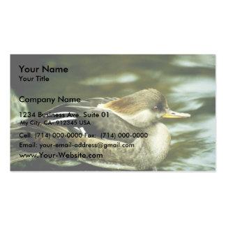Hooded Merganser Hen Double-Sided Standard Business Cards (Pack Of 100)