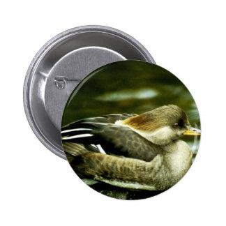 Hooded Merganser Hen Pins