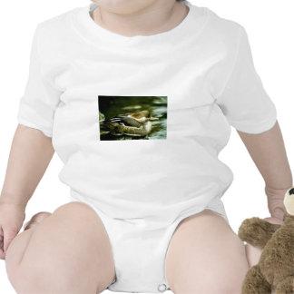 Hooded Merganser Hen Tshirts