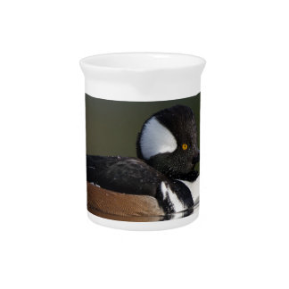 Hooded Merganser in evening light Beverage Pitcher