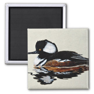 Hooded merganser magnet