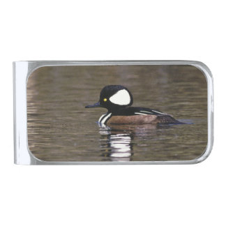 Hooded Merganser money clip